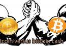 Bitcoin versus Bitcoin Cash