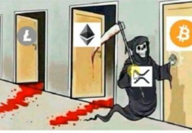 As melhores piadas do Crash do Bitcoin!
