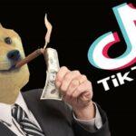 Muito obrigado TikTok por multiplicar meus Dogecoins