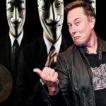 O efeito colateral de Elon Musk no mercado cripto