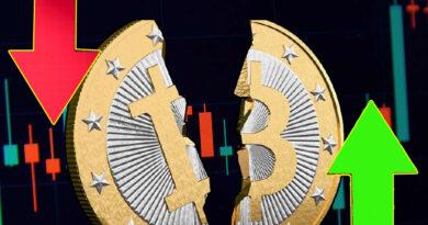 O bitcoin subiu, mas caiu! Por que será?